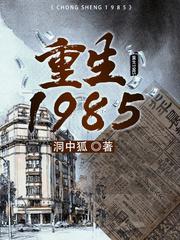 重生1985